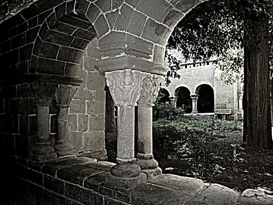 Crno-beli svet - Page 2 Garden_of_desires_by_anabelmr-d4m6v8l