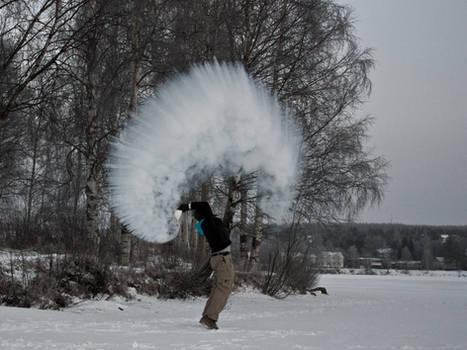 Talvikukkanen 3