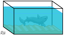 Shark Tank Page Deco by Riffhai