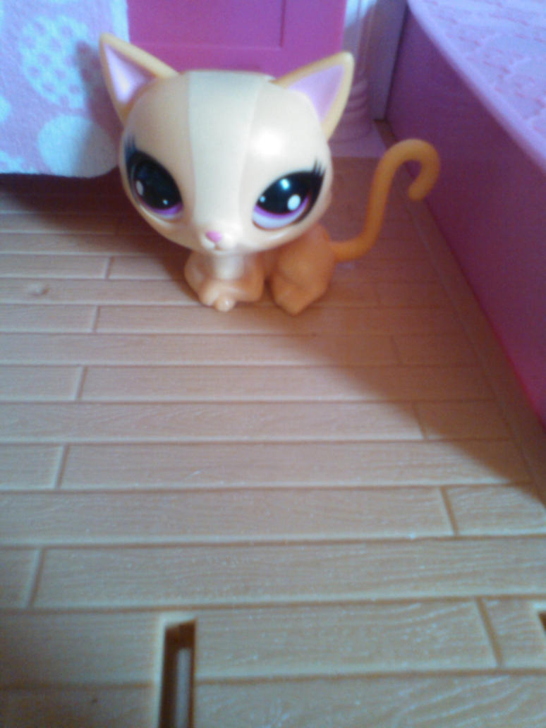 My LPS Collection Lady by MLPG1Brony