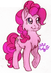 November Sketch 04- Pinkie Pie