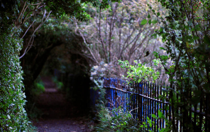 ST Marge's Path by piskieheart