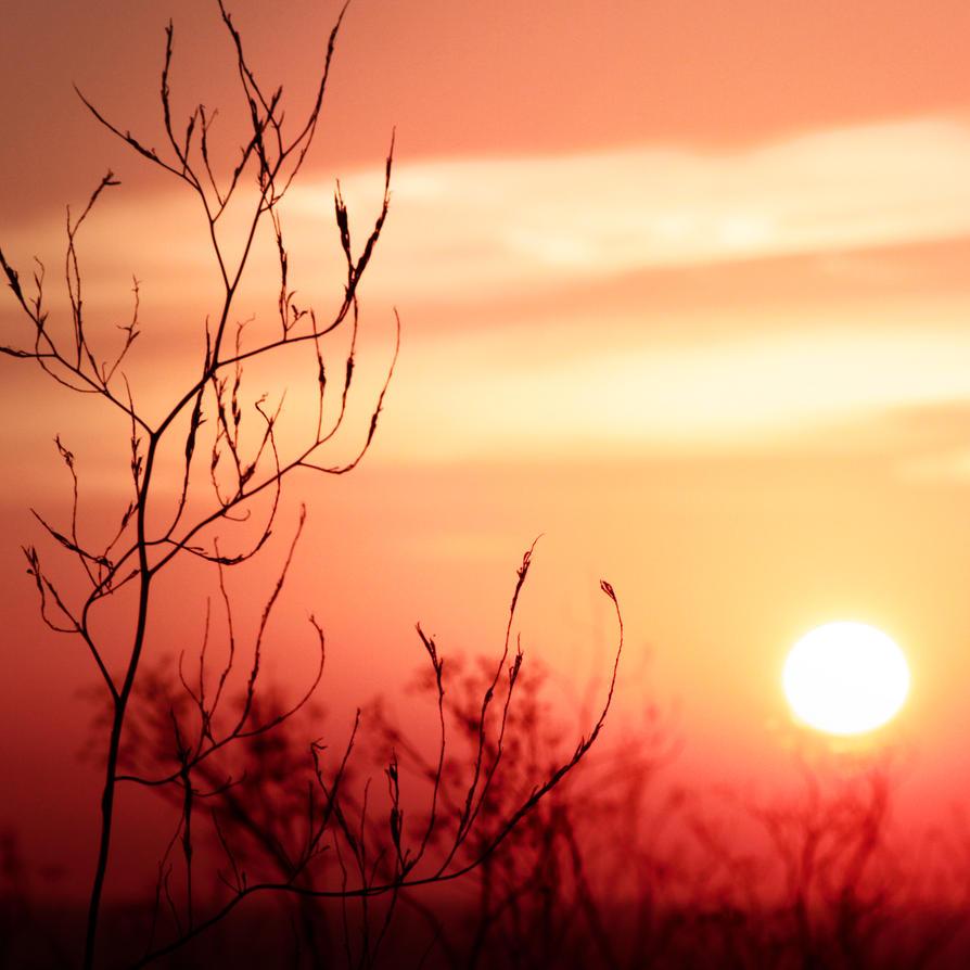 Sunrise Blindness by piskieheart