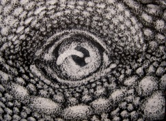 Mini Lizard Eye by Anima-Lux-Artifex