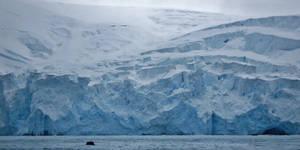 Little Zodiac Big Glacier
