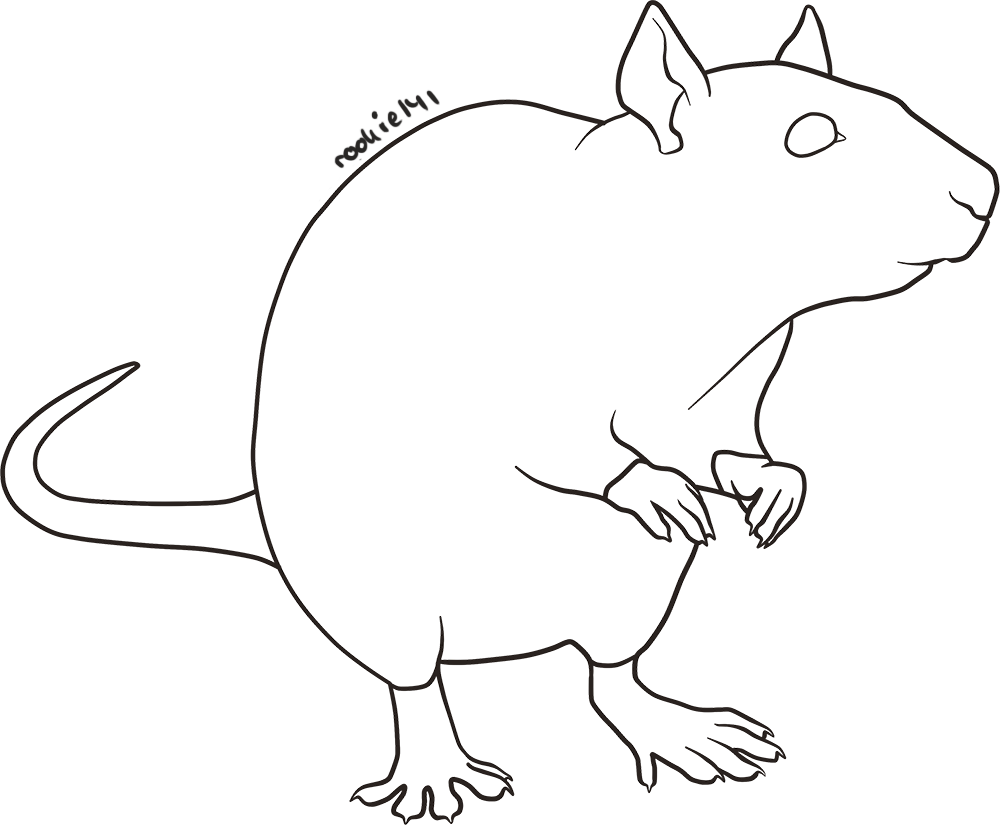 Line Drawing Rat : Free rat lineart by rookie on deviantart