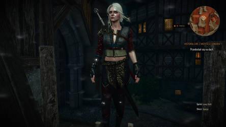 Witcher 3 Wild Hunt by Witcher122 on DeviantArt