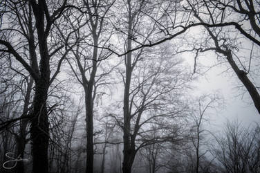 Silent Hill by stepheesmq