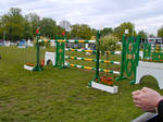 Obstacle Show Jumping #1