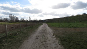 follow the path #2