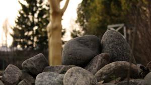 Some Rocks, Too