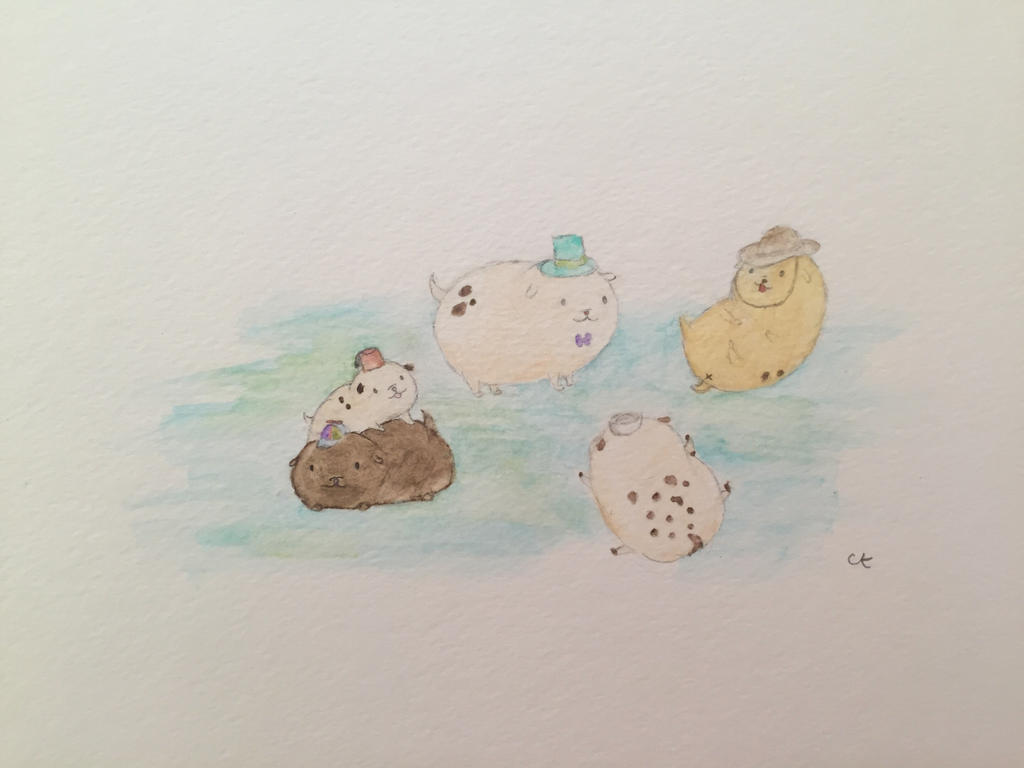 Tiny Dogs with Tiny Hats by bubbybubbles12