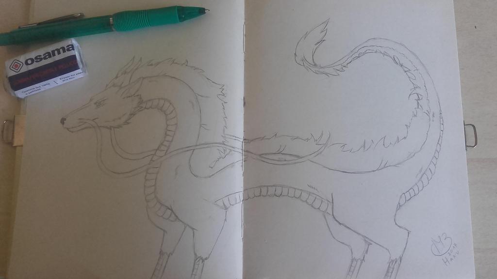 Sketch - Haku by QueenArturia