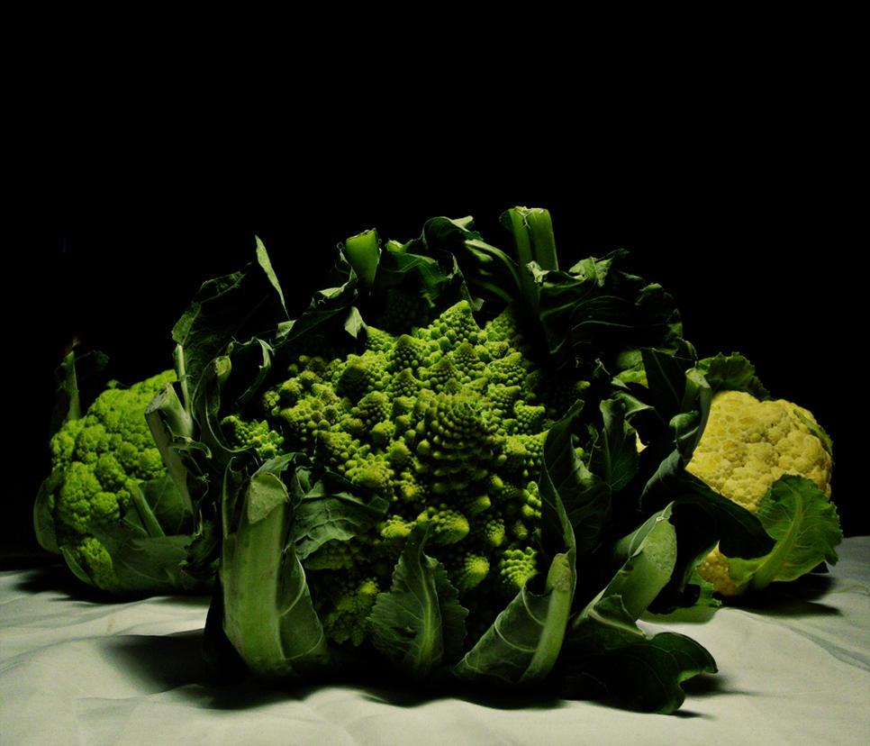 Romanesco brocoli by Yourmung