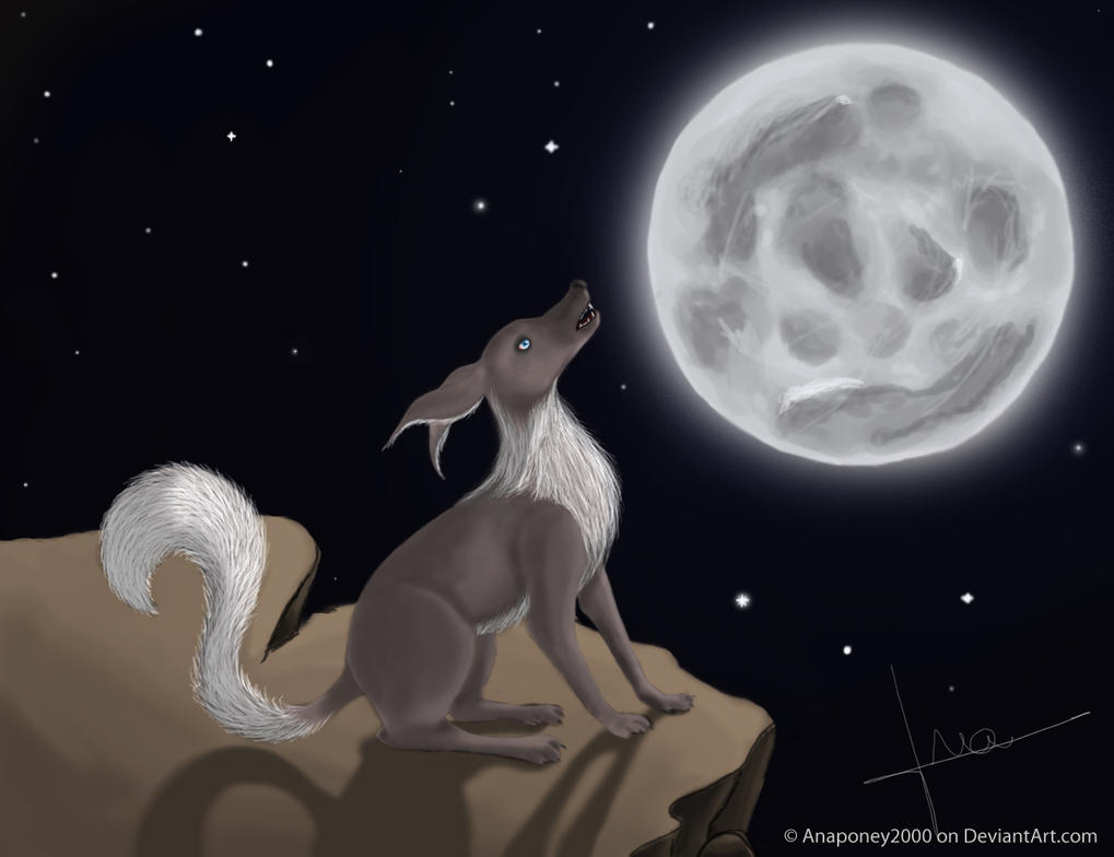 Les dessins d'Ananaas Wolf_of_the_night_by_anaponey2000-d5w6opx