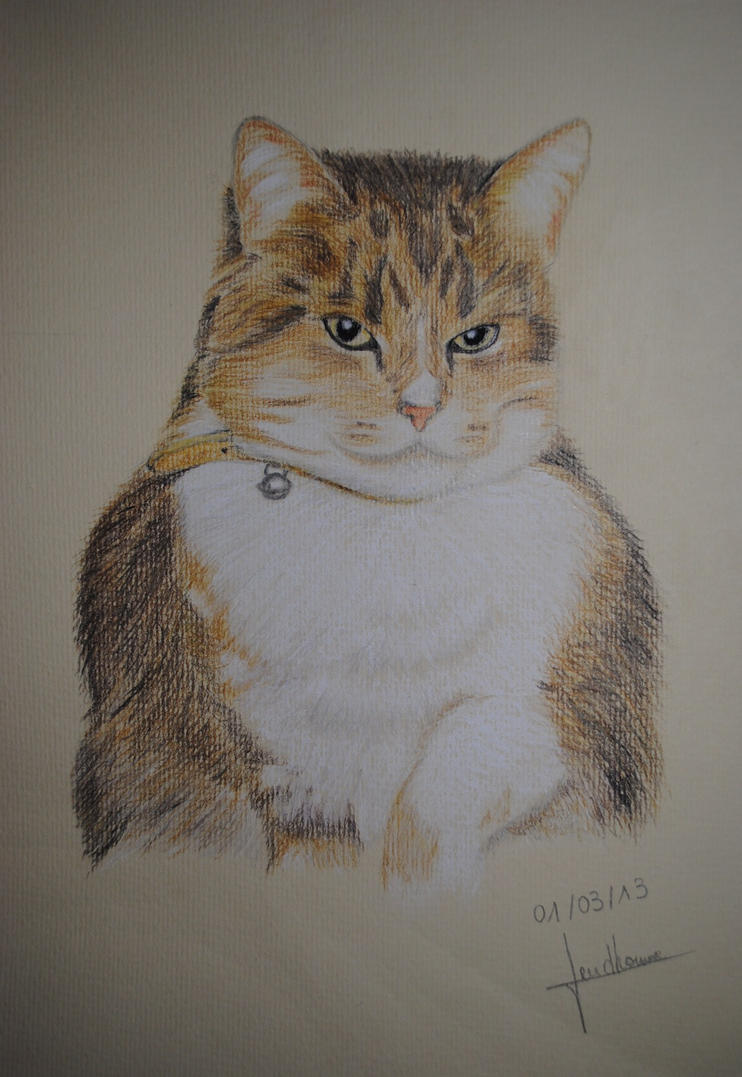 Les dessins d'Ananaas My_little_big_cat_by_anaponey2000-d5wlwgh