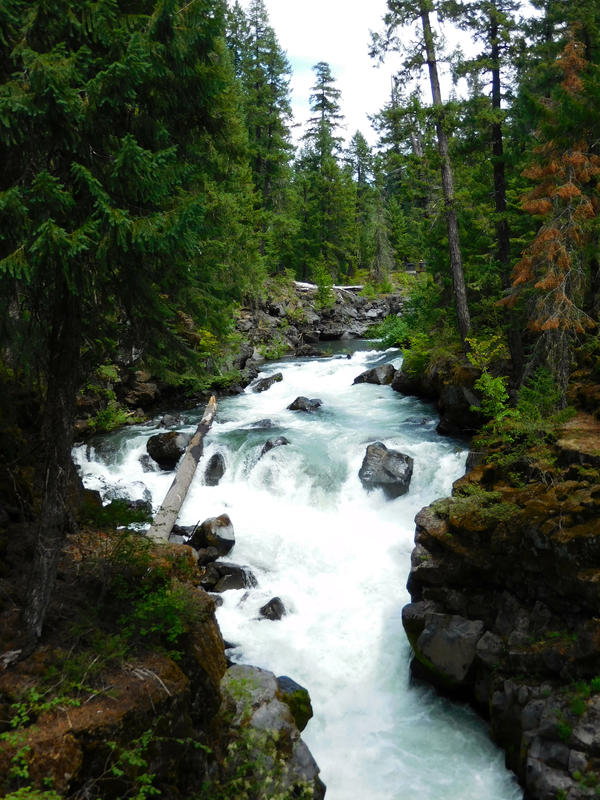 Rogue River Stock by Carol-Moore