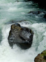 Rogue River Stock 2 by Carol-Moore
