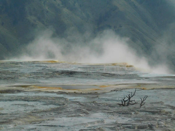 Yellowstone stock -17 by Carol-Moore