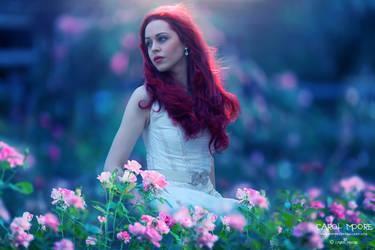 Spring Bloom by Carol-Moore