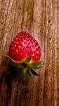 Strawberry 1 Stock