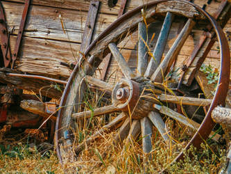 Wagon Wheel by Carol-Moore