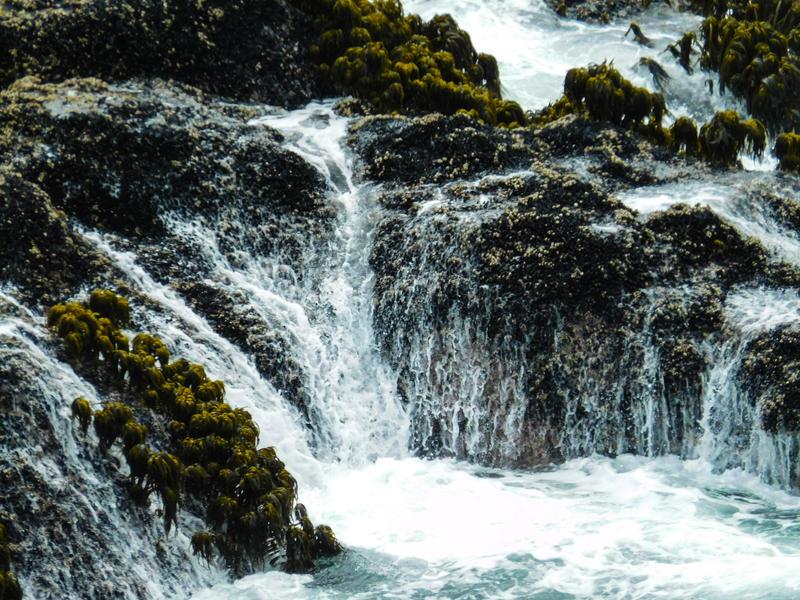 Ocean Stock3 by Carol-Moore