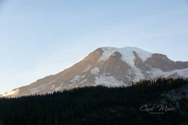 Mt. Rainier Morning Glow