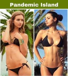 Pandemic Island