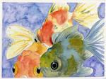 My Cute Goldfish Watercolor