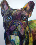 Frenchie drawing!