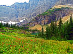 Valley of Flowers by BlackRayneRaven