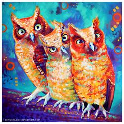 Owl Rly?