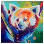 Red Panda