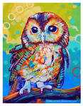 Tawny Owl by TooMuchColor