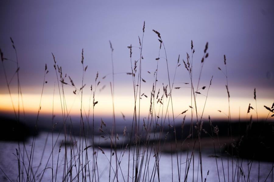Sunset by rosannabell