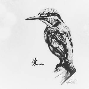 Sketch Drawing of a Bird