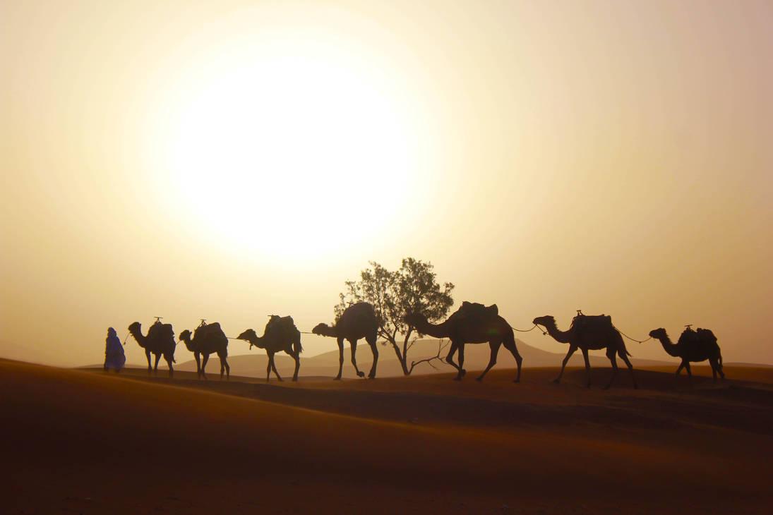 Sahara Goodbye - Morocco