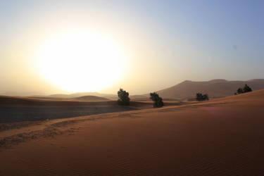 Vastness - Sahara Desert