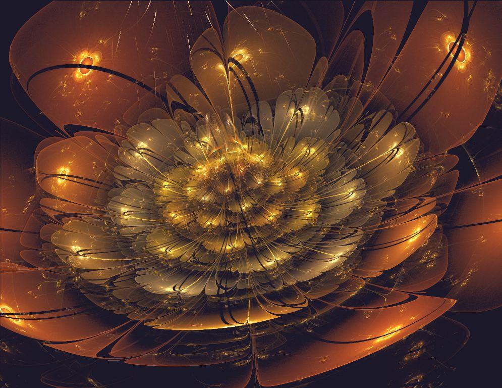 Midnight flower by Marikobard