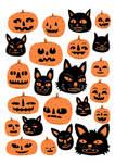 Cats and Pumpkins