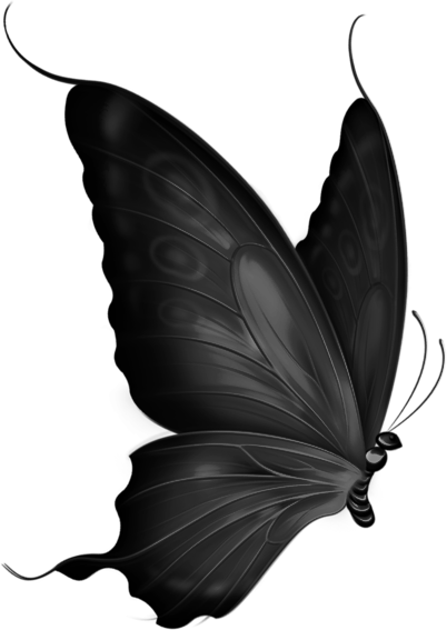 black Butterfly png by yotoots on DeviantArt