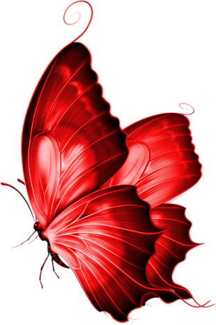 Red Butterfly png 3 by yotoots on DeviantArt