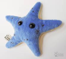 Blue and Gold Starfish Plush
