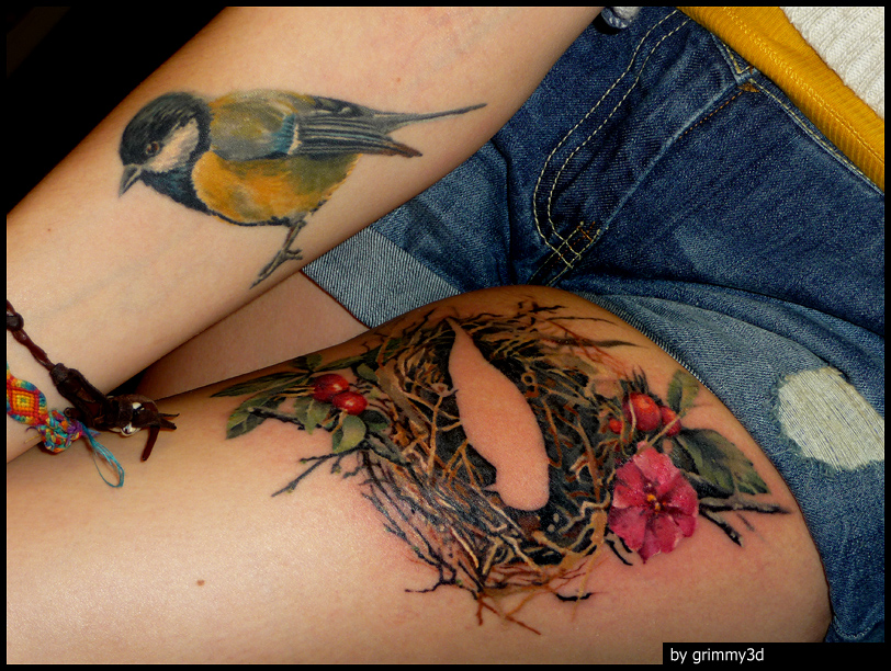 Nest and Bird