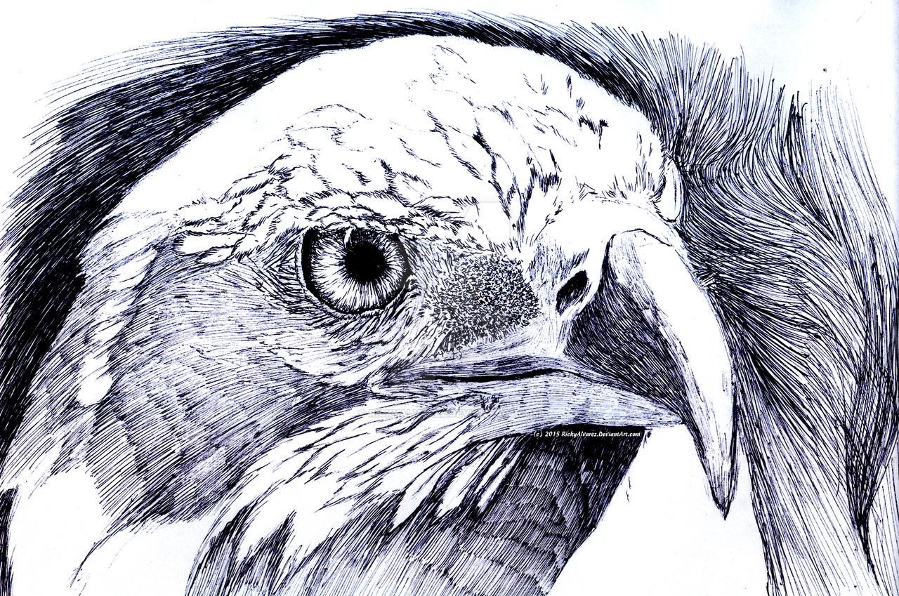 Eagle Renegade by RickyAlvarez