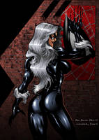 Black Cat by Ron Adrian by richmbailey