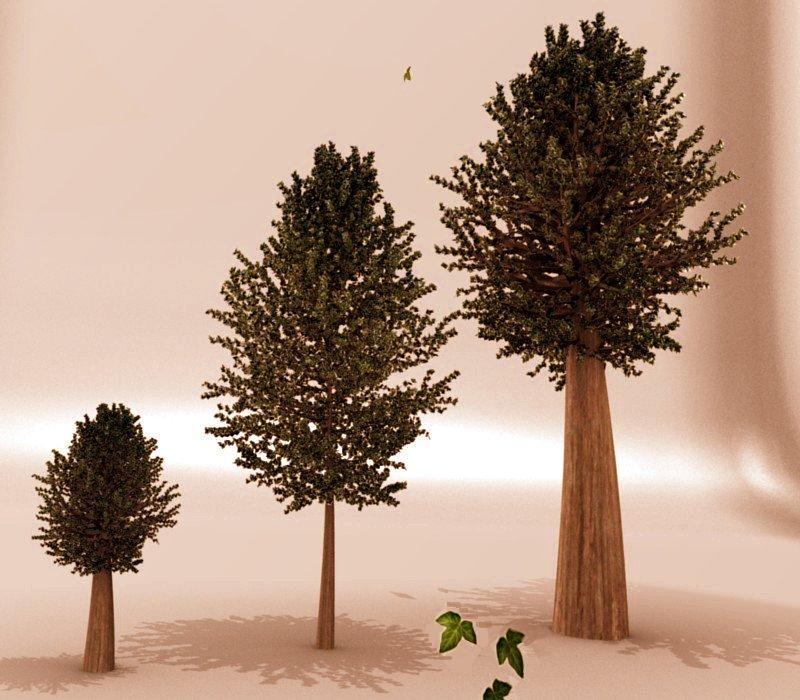 http://fc03.deviantart.com/fs19/f/2007/283/7/d/Evolution_Of_Tree_by_sdil.jpg