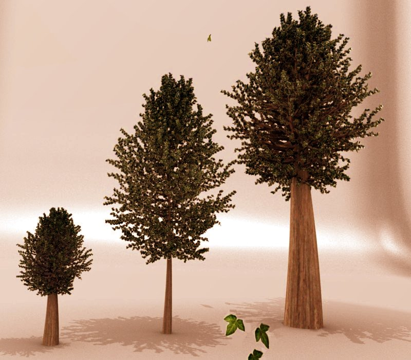 Evolution Of Tree by sdil on DeviantArt