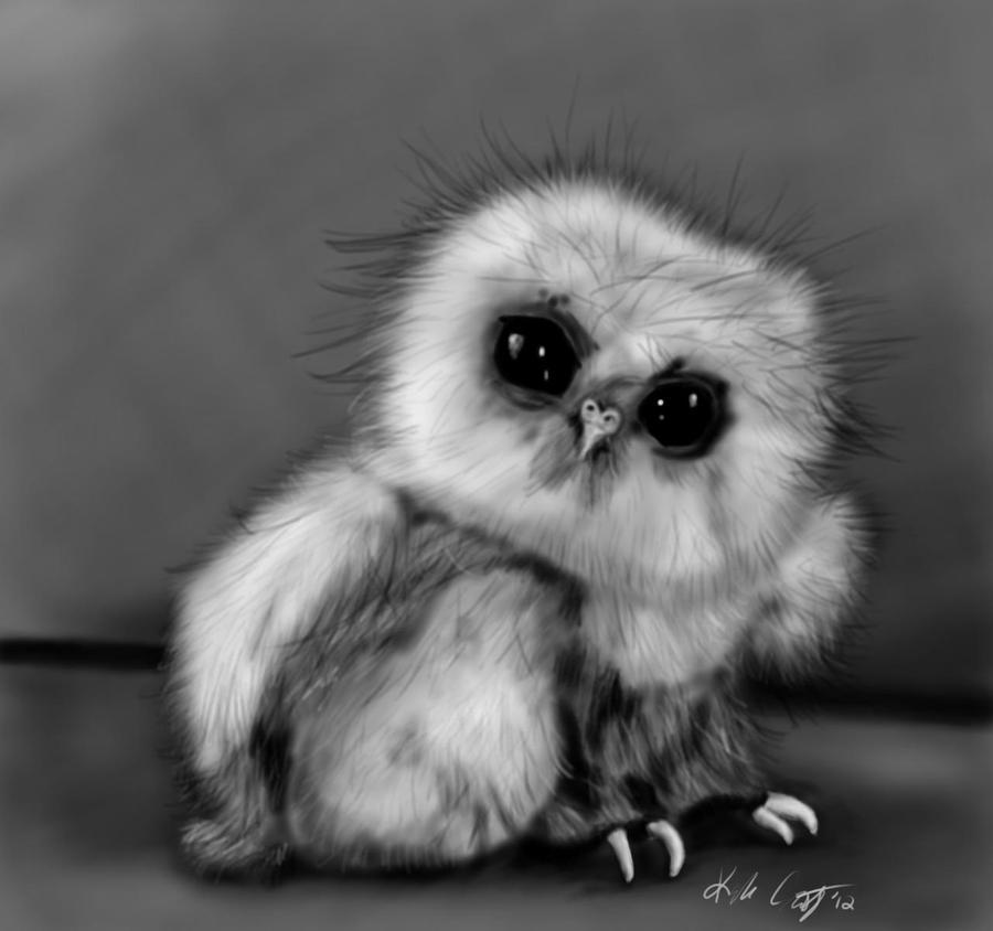 Baby Owl by KayZeSpy